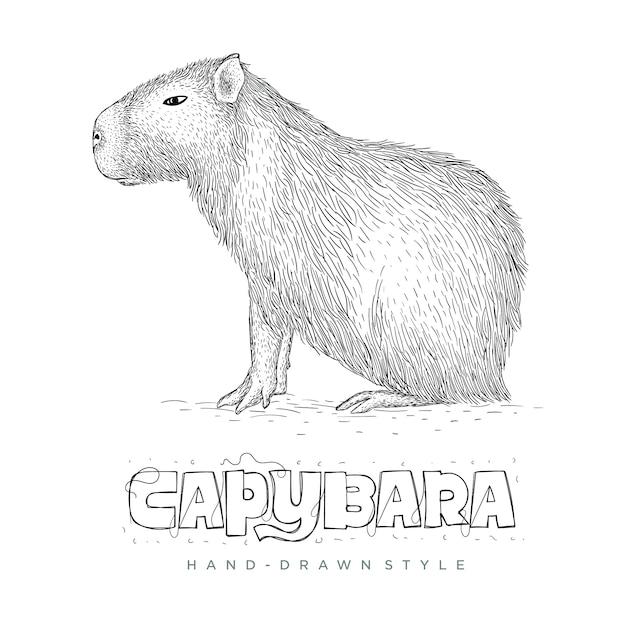 カピバラ手描き動物イラスト Premiumベクター