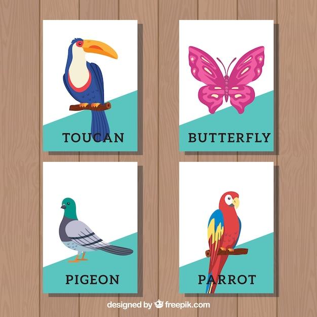 鳥と蝶のカードコレクション Premiumベクター