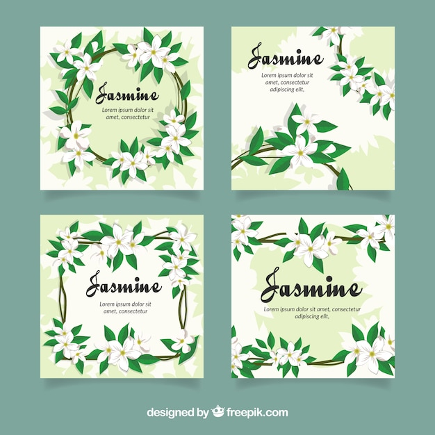 Card collection with modern jasmine flowers