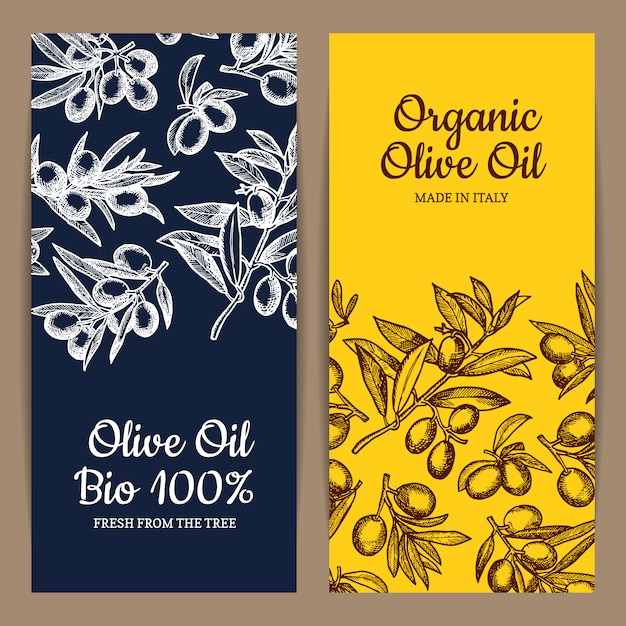 Card or flyer template with place for text for oil company with hand drawn olive branches Premium Vector
