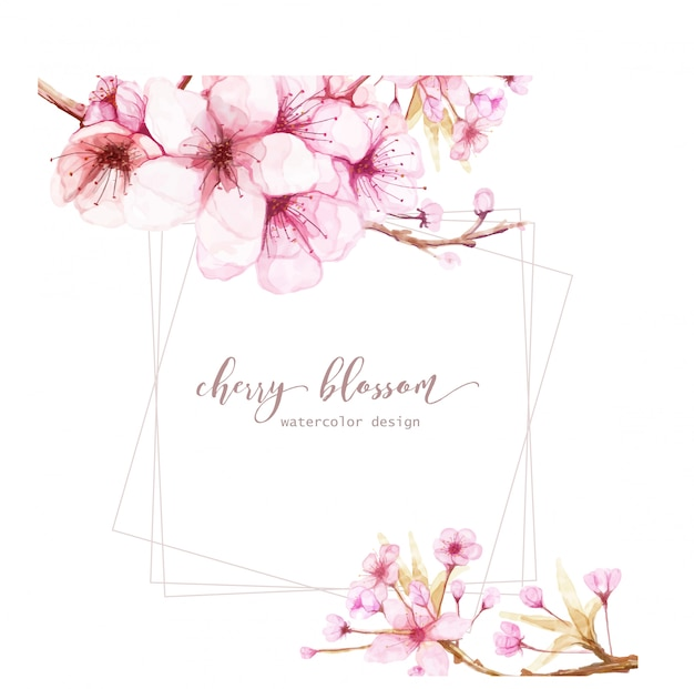Card template with watercolor flowers of cherry blossom Premium Vector