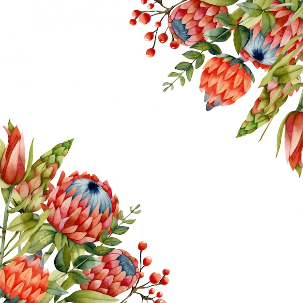 Card template with watercolor protea flowers Premium Vector