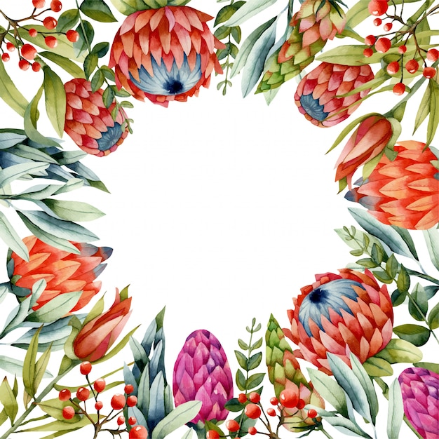 Card template with watercolor red protea flowers Premium Vector
