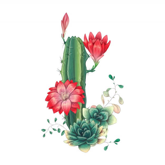 Card with cactuses and succulents set Premium Vector