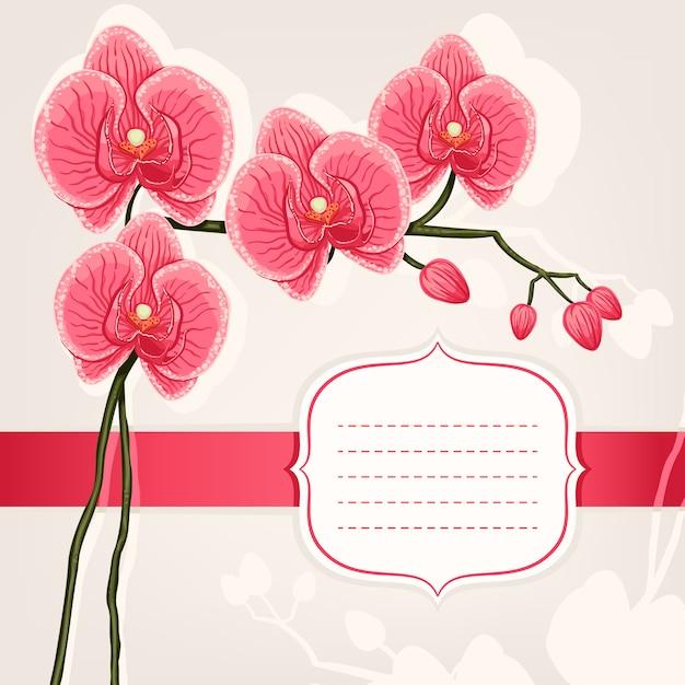 ピンクの蘭のカード Premiumベクター
