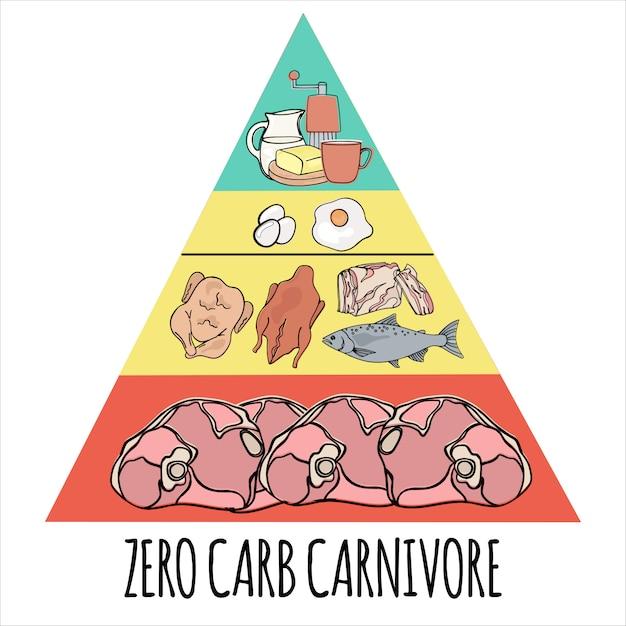 Carnivore pyramid organic healthy food Premium Vector