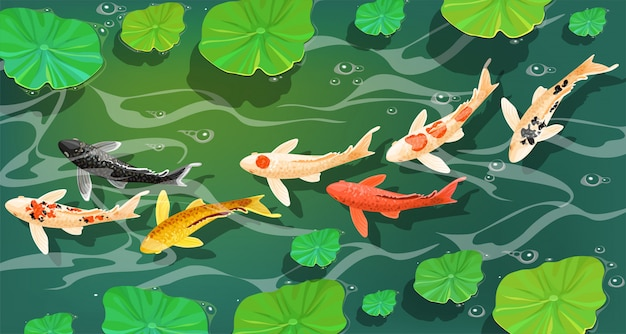 Carps koi fish under water. Free Vector