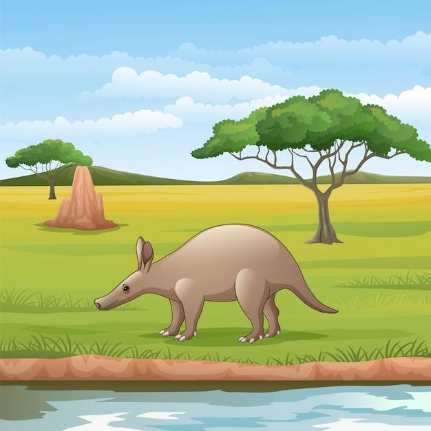 Cartoon aardvark in the savannah Premium Vector