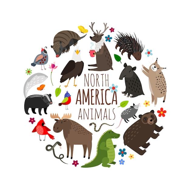 アメリカのバナーの漫画の動物 Premiumベクター