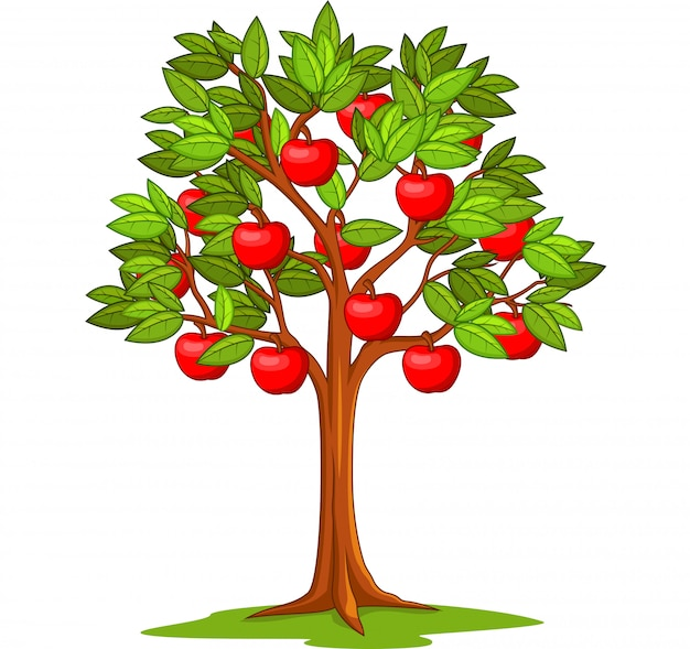 Cartoon apple tree isolated | Premium Vector