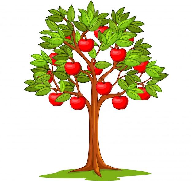 Cartoon apple tree isolated Premium Vector