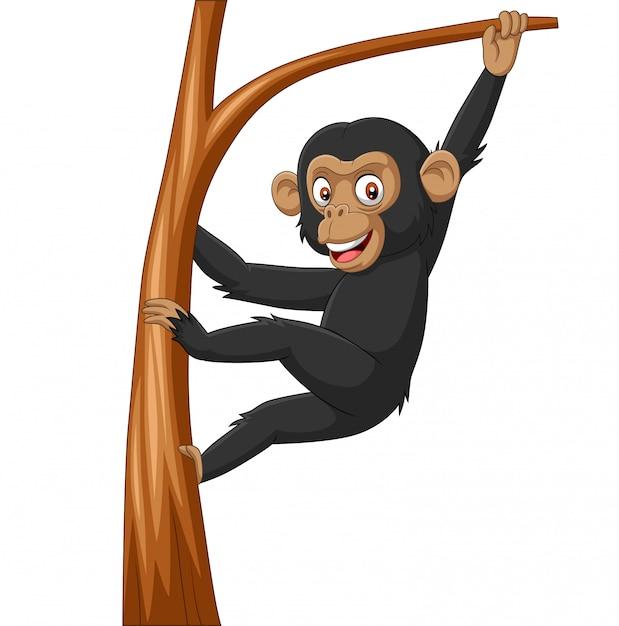 木の枝にぶら下がっている漫画赤ちゃんチンパンジー Premiumベクター