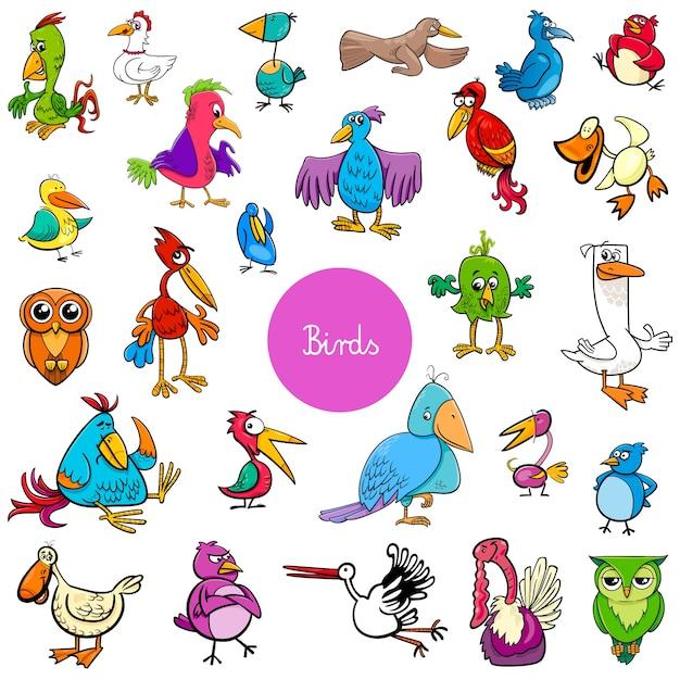 Cartoon birds animal characters big collection Premium Vector