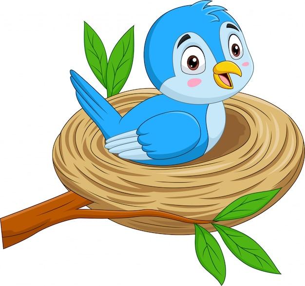 巣に座っている漫画青い鳥 Premiumベクター