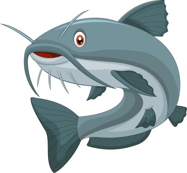 Cartoon catfish Premium Vector
