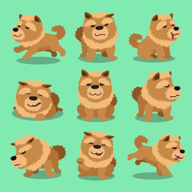 Cartoon Character Chow Chow Dog Poses Premium Vector