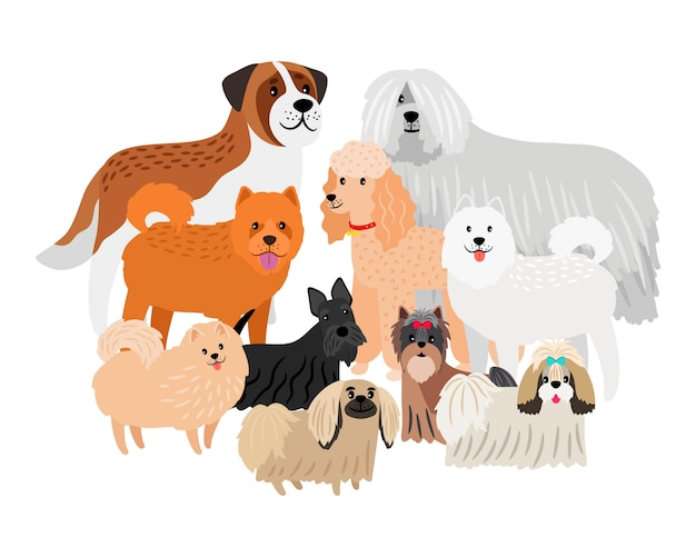 Cartoon character loing hair big and small dogs.  pets  on white background Premium Vector