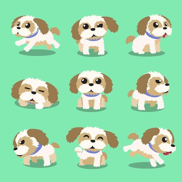 Shih tzu cute dog gif on gifer by anaralanim.