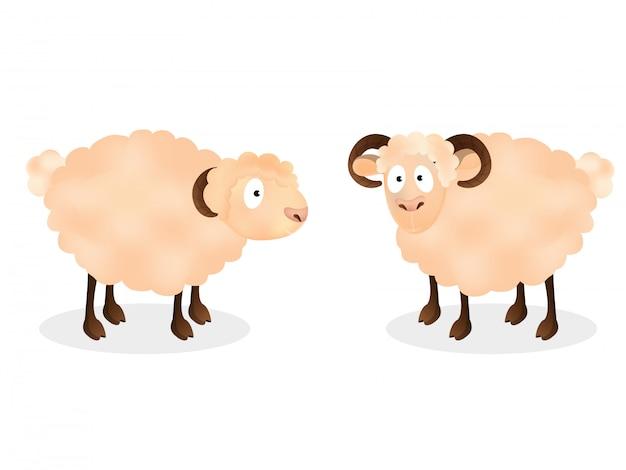 Cartoon character of two sheep standing Premium Vector