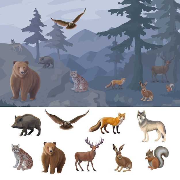 Cartoon colorful forest animals set Free Vector