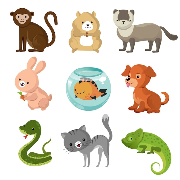 Сборник мультфильмов с милыми домашними животными Premium векторы