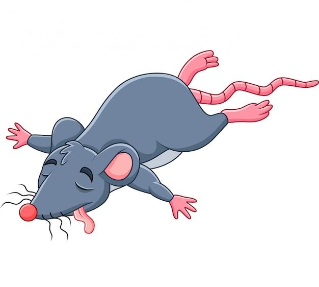 Cartoon dead mouse Premium Vector