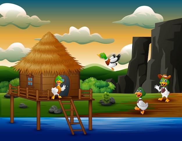 Cartoon ducks flies to a hut on the river Premium Vector