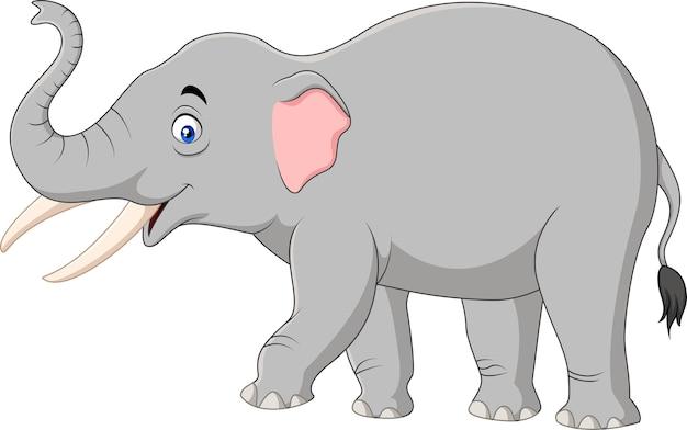Cartoon elephant isolated on white background Premium Vector