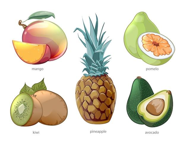 Набор иконок мультфильм экзотических тропических фруктов. помело, манго, ананас, киви Бесплатные векторы