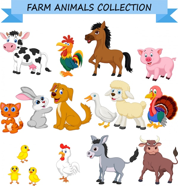 Cartoon farm animals collection Premium Vector