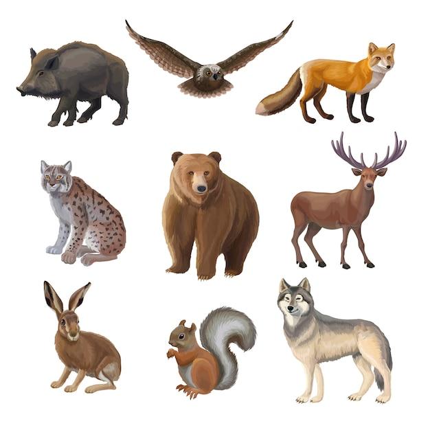 만화 숲 동물 세트 무료 벡터
