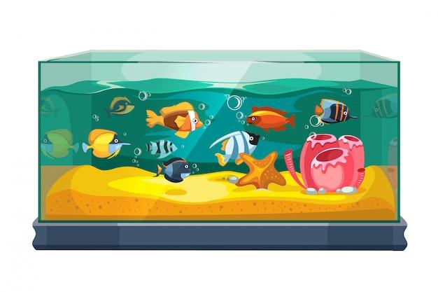 Cartoon freshwater fishes in tank aquarium Premium Vector