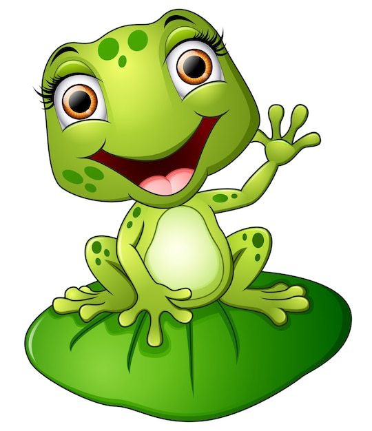 cartoon frog sitting on the leaf vector premium download