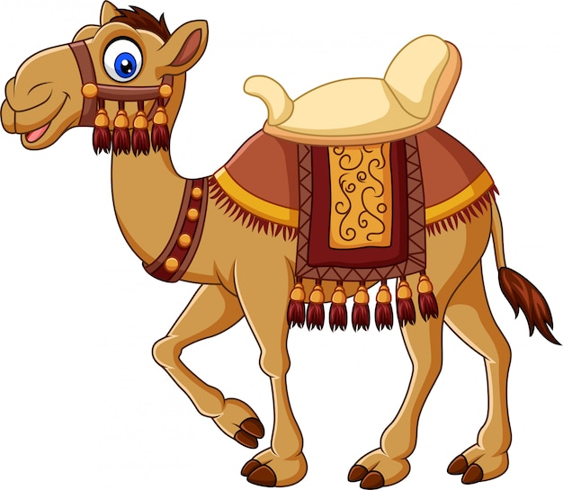 Cartoon funny camel with saddlery Premium Vector