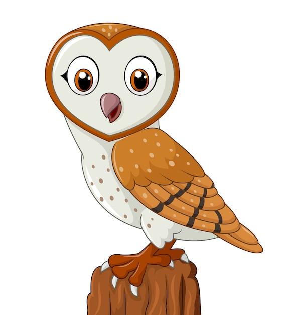 Cartoon funny owl isolated on white background | Premium ...