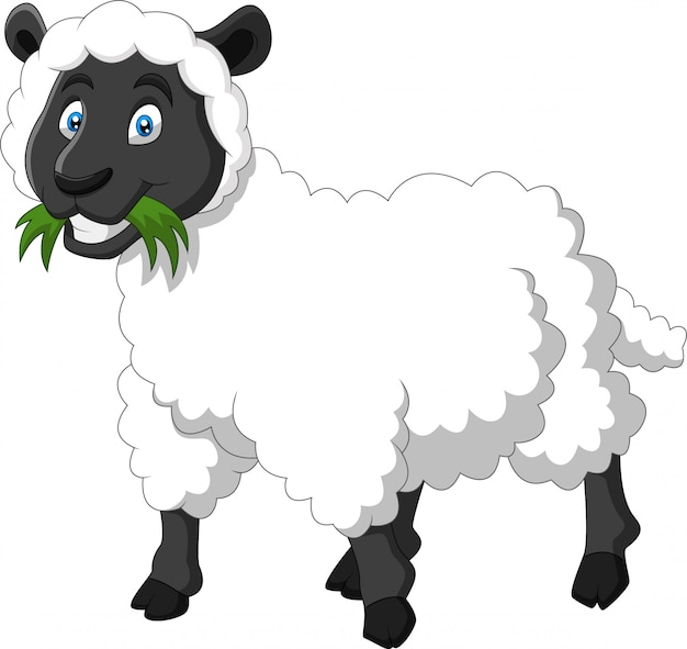 Мультфильм смешная овечка улыбка Premium векторы