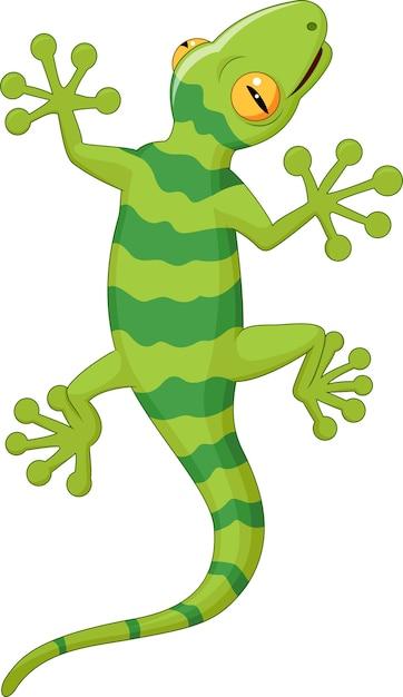 Cartoon gecko Premium Vector