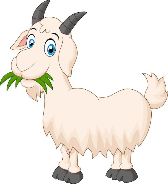 Cartoon goat eating grass Premium Vector