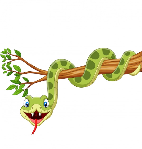 Cartoon green snake on tree branch Premium Vector