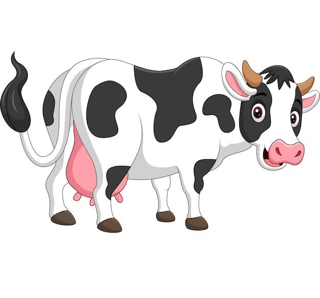 Cartoon happy cow posing isolated on white Premium Vector
