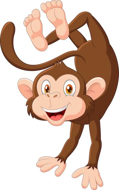 Cartoon happy monkey dancing isolated on white background ... (626 x 993 Pixel)