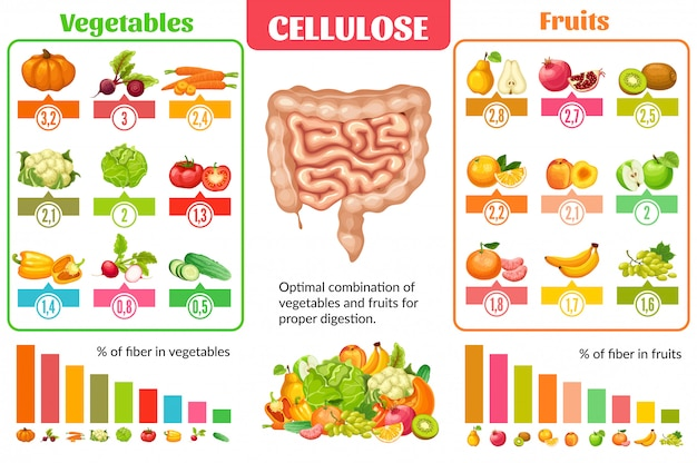 Концепция инфографики здорового питания мультфильм Бесплатные векторы