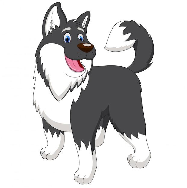 Карикатура иллюстрации аляскинского мальмута Premium векторы