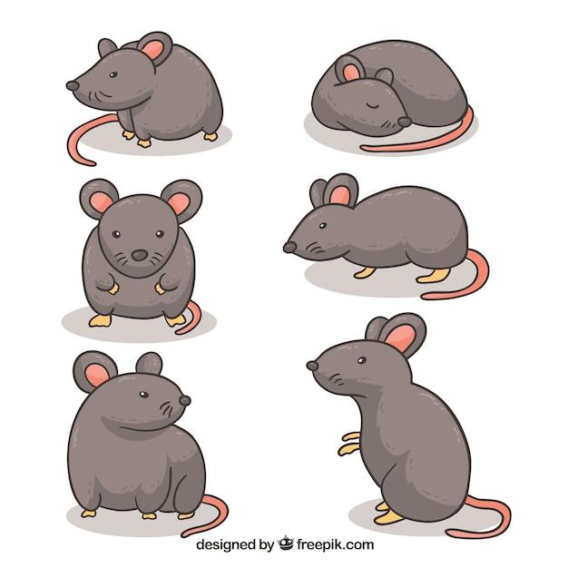Cartoon mice collection