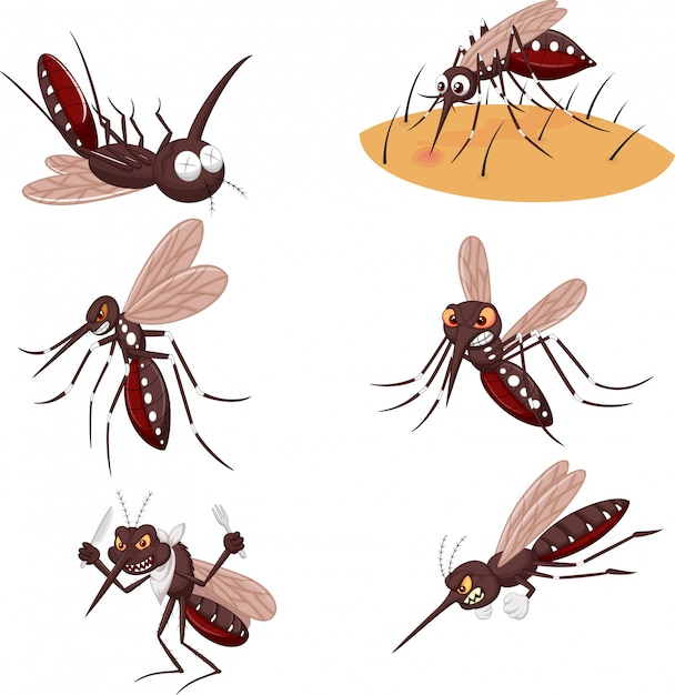 Cartoon mosquito collection set Premium Vector