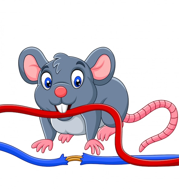 Cartoon mouse biting the cable Premium Vector