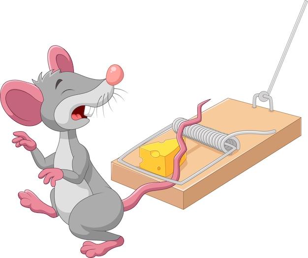 白い背景にあるマウストラップの漫画のマウス Premiumベクター