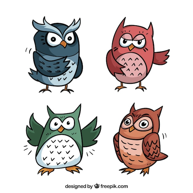 Cartoon owl collection of four