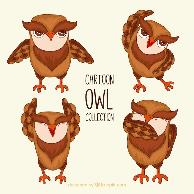Cartoon owl collection