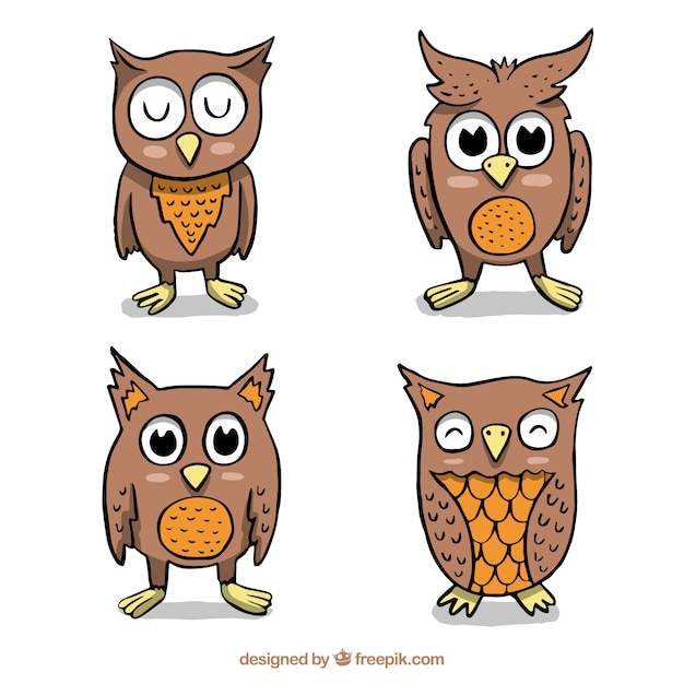 Cartoon owl pack of four